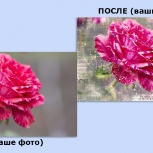 Изготовление фотообоев из фотографии от Фотообои ТОП, Сургут